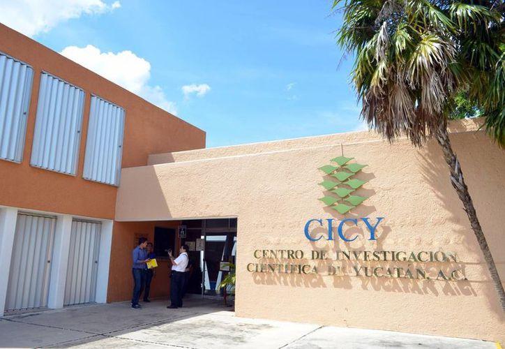 El CICY anunció la entrega de sendos reconocimientos a 5 profesores de la institución, por sus destacadas contribuciones en el campo científico y tecnológico. (Archivo/Milenio Novedades)