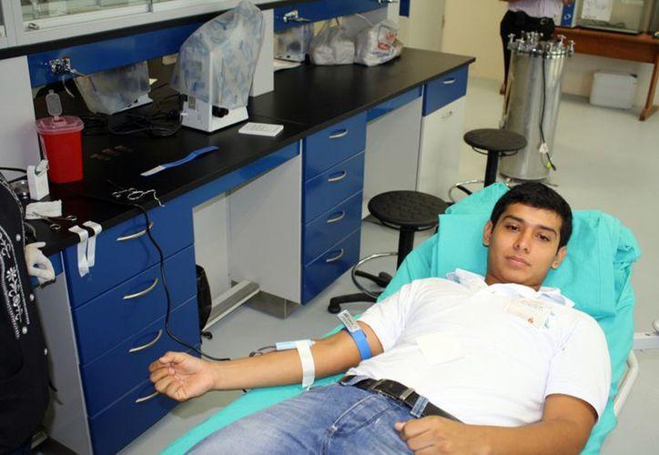 Uno de los 150 donadores de la universidad. (Francisco Sansores/SIPSE)