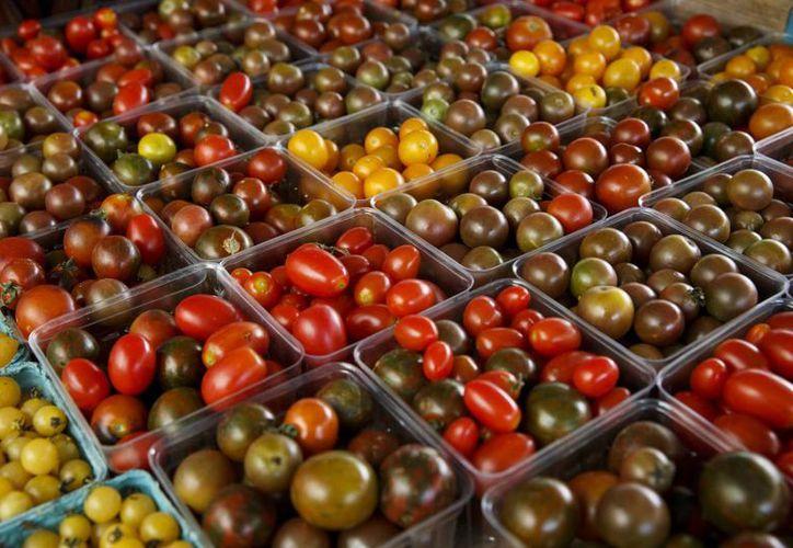 El prolongado refrigeramiento de los tomates les quita su característico olor y sabor. (AP/J. Scott Applewhite)