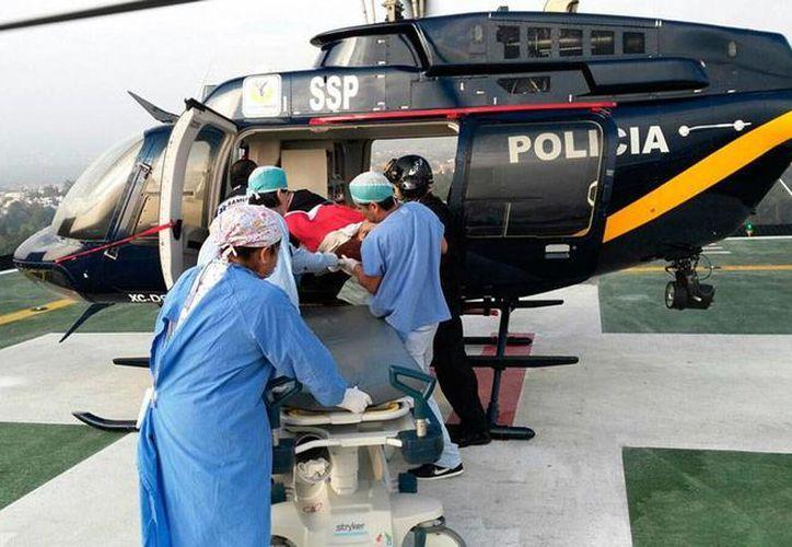 Este martes por la noche arribarán a México los restos de los turistas fallecidos en Egipto por un ataque del Ejército. La imagen corresponde a la llegada, en días pasados, de los heridos en el mismo incidente. (NTX/Archivo)