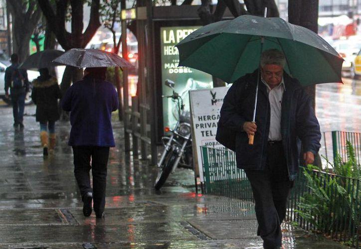 En estados como Chiapas y Tabasco se registrarán lluvias por efectos del Frente frío 14. (Notimex)