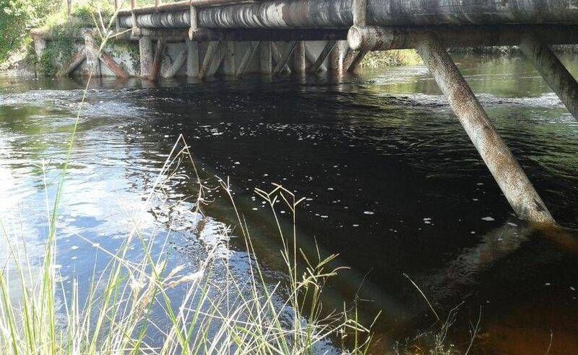 La laguna de Noh Bec inundó diversas áreas pobladas. (Manuel Salazar/SIPSE)