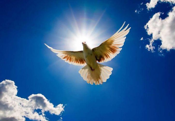 En el Antiguo Testamento se usa la palabra Espíritu, con el significado de: fuerza de Dios. (enfasisenlaverdad.org)