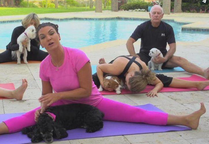 La clase de doga se lleva a cabo con la mascota y el dueño. (Fotografía: DogaDogPromo)