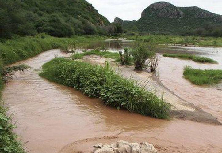 Se prevé la compra de 36 plantas potabilizadoras para limpiar el agua, lo cual tendrá un costo de 350 millones de pesos. (Archivo/AP)