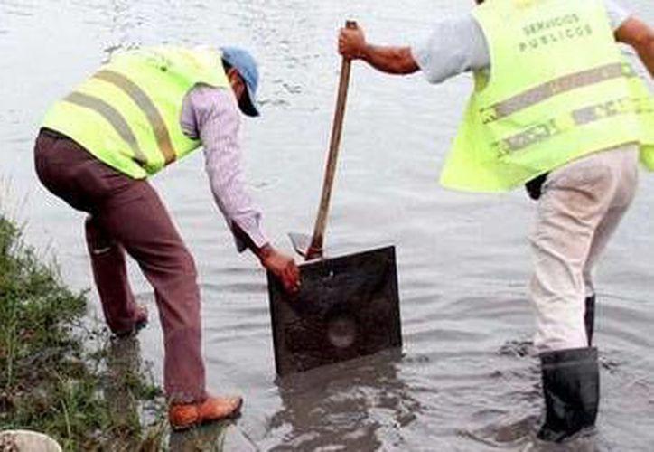 En caso de ser necesario y la situación se agrave, se sumará más personal a la limpieza de alcantarillados. (Redacción/SIPSE)