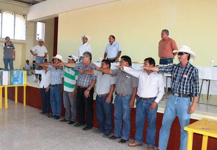 La nueva Unión ya cuenta con seis agrupaciones. (Edgardo Rodríguez/SIPSE)