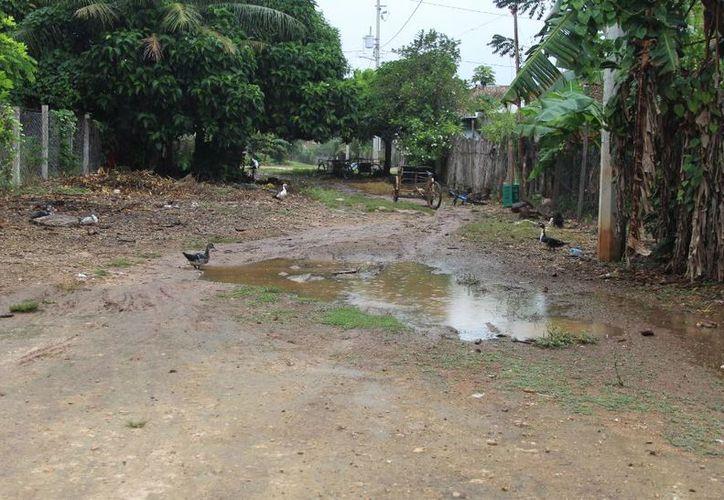 La mayoría de las calles de las localidades rurales se encuentran en pésimo estado. (Carlos Castilla/SIPSE)