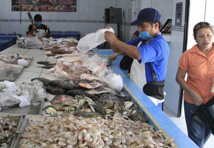 La Profeco realiza inspecciones en pescaderías y otros comercios de Chetumal para cuidar que no haya abusos contra los consumidores. (Ángel Castilla/SIPSE)