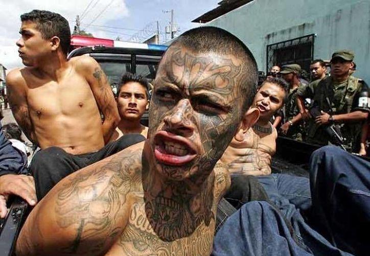 La policía salvadoreña capturó a cuatro líderes de la MS-13, quienes ordenaban extorsiones a comerciantes de San Salvador. (Archivo/Agencias)