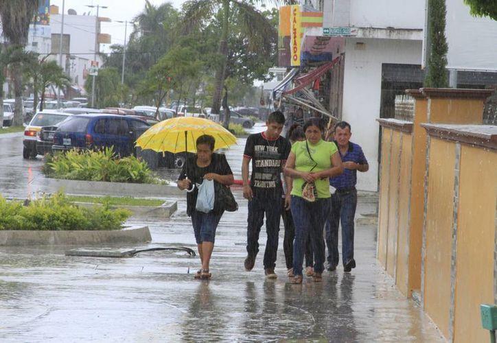 Las lluvias se registraron en los municipios del sur del Estado durante los primeros días de agosto. (Redacción/SIPSE)