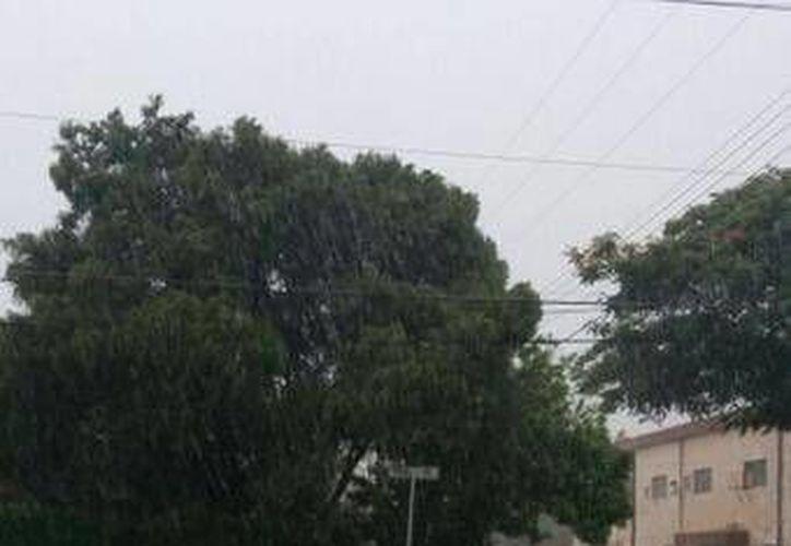 Aspecto de la lluvia en la colonia García Ginerés. (@saritalove_)
