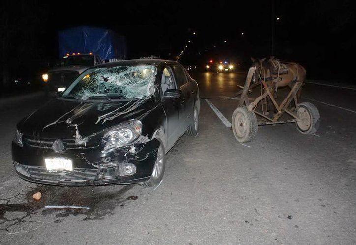 El vehículo y la carreta quedaron destrozadas, la yegua salió, por suerte, salió ilesa. (Milenio Novedades)