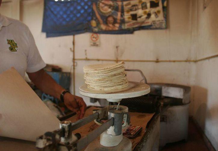 Actualmente el precio del kilo de tortilla está en 16 pesos. (Archivo/SIPSE)