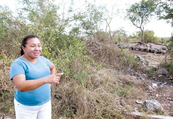 Los vecinos indicaron que en la zona de los fraccionamientos Los Héroes, y ahora en Kanasín, existen diversos montículos como vestigios mayas. (Milenio Novedades)