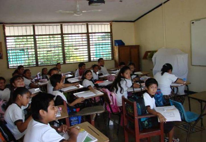 Desde las aulas, los estudiantes en las primarias indígenas participantes fueron preparados. (Manuel Salazar/SIPSE)