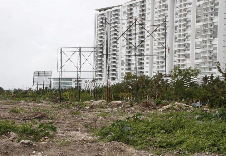 Los predios fueron asegurados para proteger la flora y fauna de del Malecón Tajamar Cancún. (Tomás Álvarez/SIPSE)