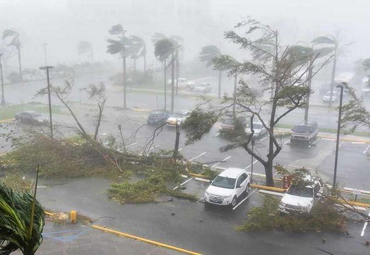 El gobierno de Dominica reportó el jueves al menos 15 personas muertas. (AFP).