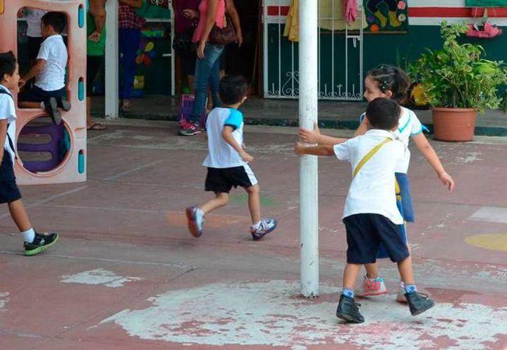 Estiman que en Yucatán  5 de cada 100 menores pueden presentar esta condición. (SIPSE)