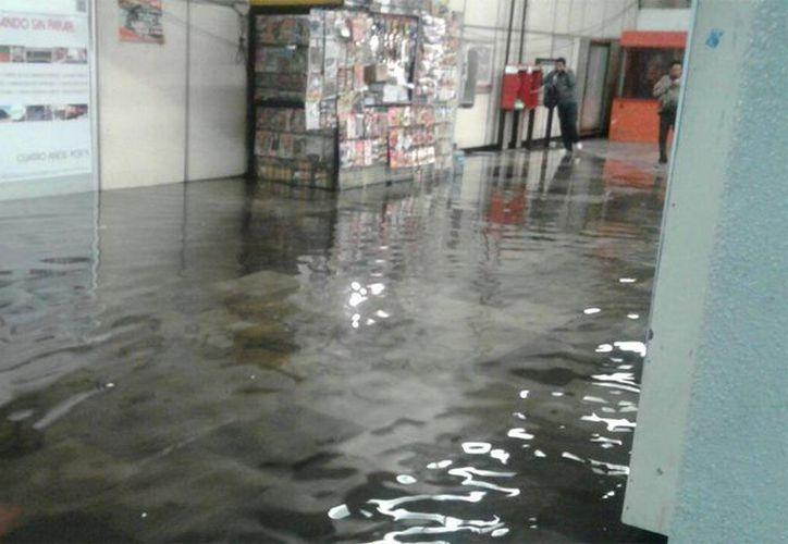 La acumulación de basura y con ello el impedimento para que el agua de lluvia se canalice, provocó ayer inundaciones en calles de Iztapalapa y el Estado de México, así como en la Línea A del Metro. (excelsior.com)