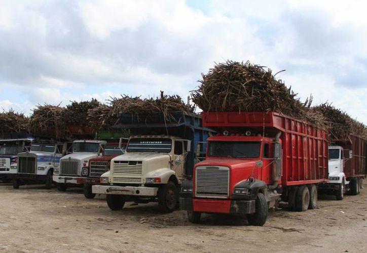 Camiones cañeros no tienen documentación y eso impide que alguna empresa proporcione seguros. (Redacción/SIPSE)