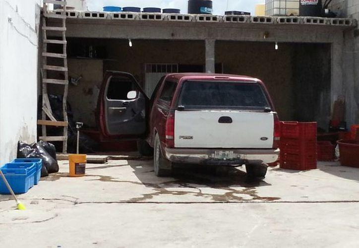 La bodega donde se confiscó la mayor parte del pepino de mar propiedad de 'Pipiji'. (SIPSE)