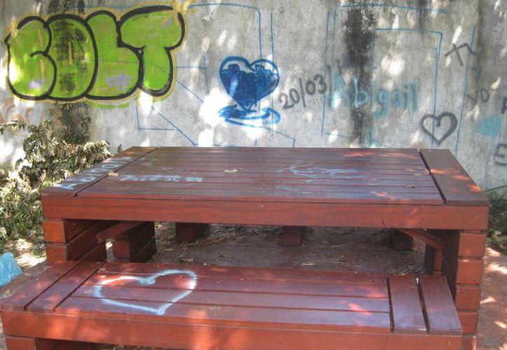 Basura, paredes grafiteadas, incluso con mensajes obscenos; bancas sucias y rotas es el aspecto que presenta uno de los andadores de la avenida Costera. (Javier Ortiz/SIPSE)
