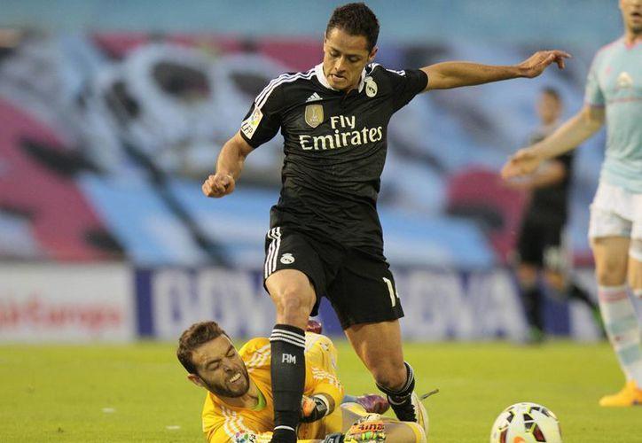 Al igual que a media semana, en que anotó el único gol en partido ganado 1-0 por Real Madrid para calificar a semifinales de la Champions League, hoy 'Chicharito' Hernández también fue incisivo y consiguió dos goles en la remontada de 4-2 sobre Celta en la Liga de España. (Foto: AP)