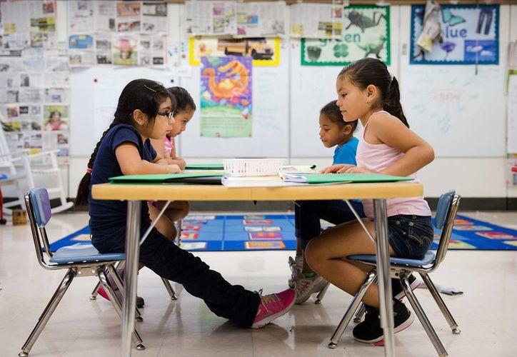 Aproximadamente un 25% de los estudiantes de minorías son hispanos, un 15 por ciento negros y un cinco por ciento asiáticos y de las islas del Pacífico. (Agencias)