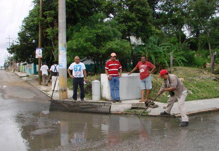 Cuadrillas del municipio ubicaron y atendieron percances causados por la perturbación climática. (Manuel Salazar/SIPSE)