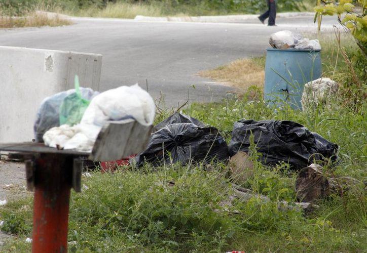 Bolsas de basura inundan la vía pública en la capital. (Enrique Mena/SIPSE)