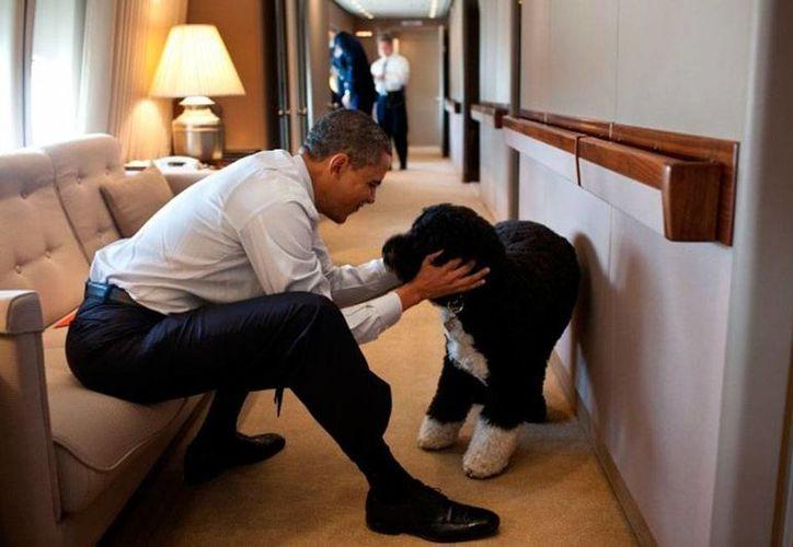 El presidente Barack Obama, a bordo del Air Force One, el avión presidencial. (RT)