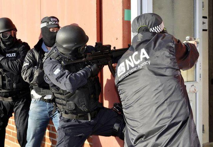 La nueva corporación no está facultada para combatir el terrorismo. (EFE)