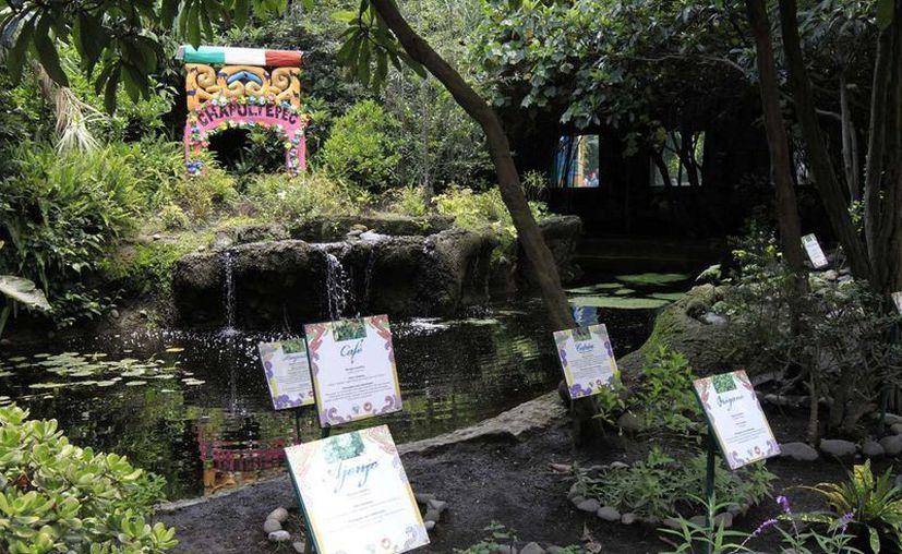 Desde hace varios años los zoológicos de la Ciudad de México empezaron su transformación. (Notimex/archivo)