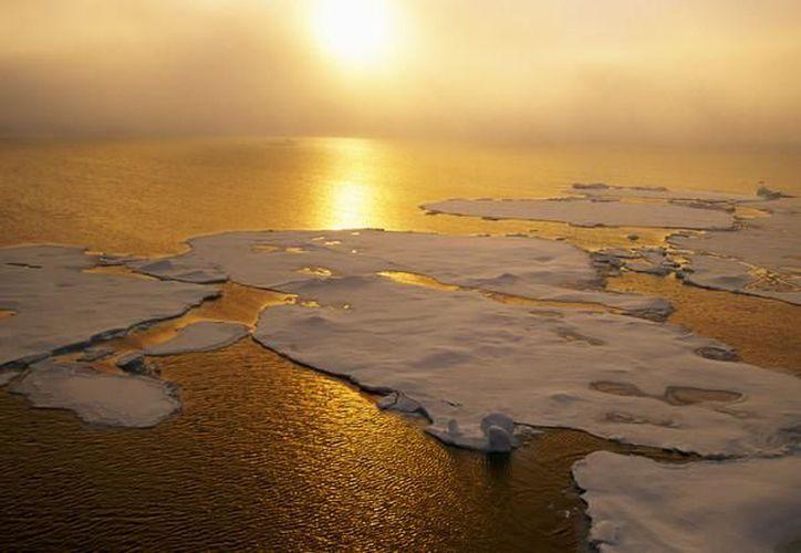 La distribución de carbono en la Tierra está altamente desequilibrada. (Contexto/Internet)