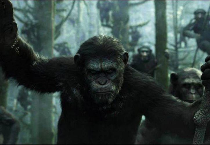 """La nueva entrega de """"Dawn of the Planet of the Apes"""", en dos semanas de proyección ha recaudado 139 millones de dólares en taquilla. (AP)"""