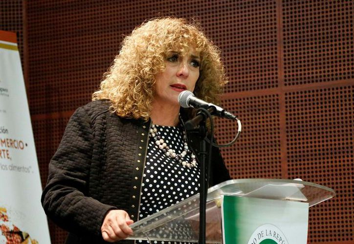 En noviembre del  2014 la senadora Luz María Beristain acudió a la máxima tribuna, para presentar una iniciativa para fomentar el trabajo de oficina en casa. (Redacción/SIPSE)
