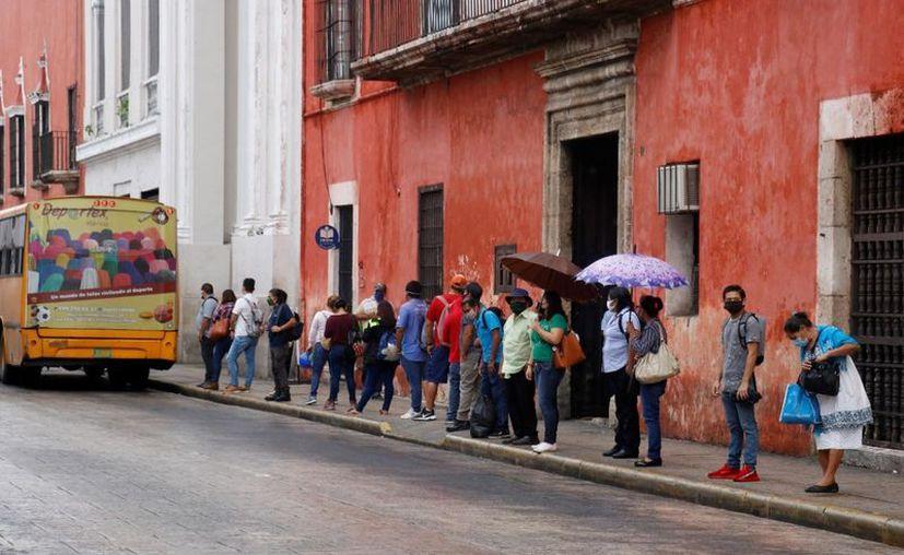 Concesionarios del transporte público en Mérida se declararon preparados para el cambio de paraderos de camiones. (Novedades Yucatán)