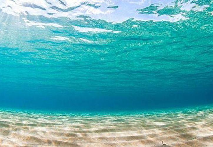 Estudian extraño sonido en el Mar Caribe, lor produce la ola de   Rossby. (Contexto/SIPSE)