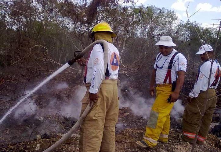 Al estar certificados los bomberos podrán brindar un servicio efectiva para salvaguardar la integridad física de la población isleña. (Redacción/SIPSE)