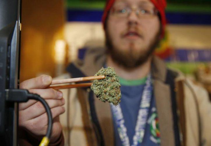 Una especialista afirma que el acceso al cannabis del tipo skunk se está volviendo cada vez mayor en Londres. Imagen de contexto. (Agencias)