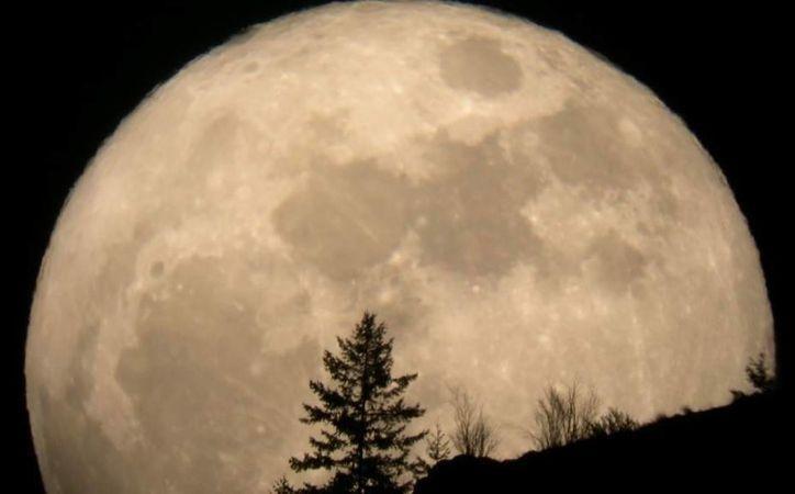 El domingo por la noche si miras al cielo podrás disfrutar de la superluna. (elsiglodedurango.com.mx)