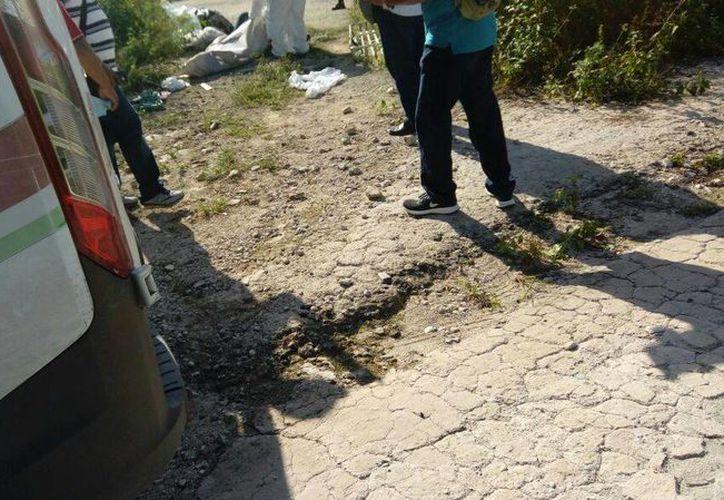 Fue encontrado putrefacto en terrenos del municipio de Puerto Morelos. (Eric Galindo/SIPSE)