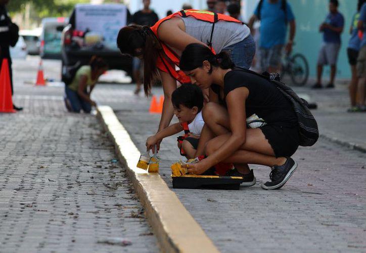 Participan en una jornada para marcar con señalética la ciclovía. (Adrián Barreto/SIPSE)