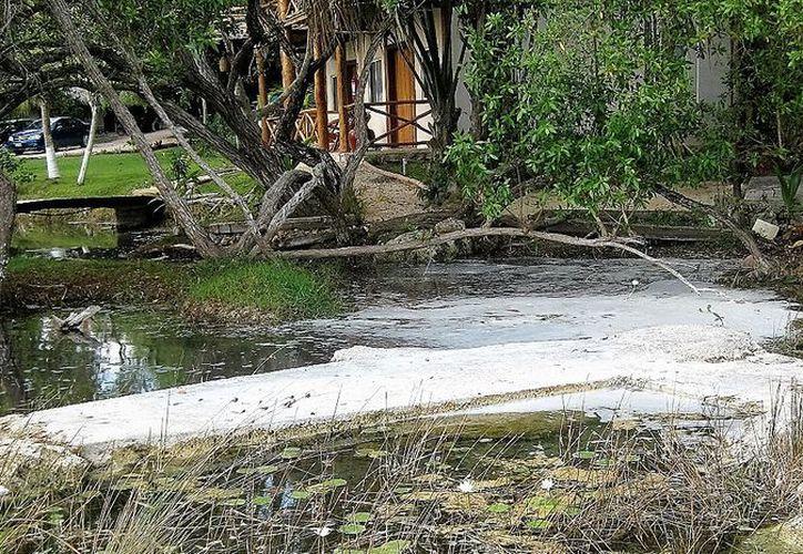 Una capa de espuma cubrió parte de la laguna de Bacalar, vecinos denunciaron el hecho. (Javier Ortiz/SIPSE)