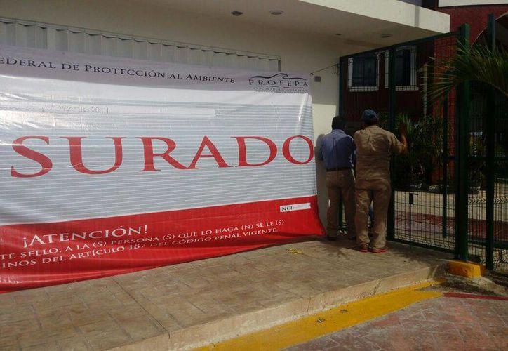 La empresa se ubica en la Terminal Marítima de Puerto Juárez. (Redacción)