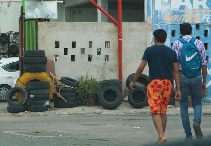 En la pasada jornada de descacharrización se recolectaron 10 mil toneladas de cacharro de las zonas irregulares. (Foto: Paola Chiomante/SIPSE)