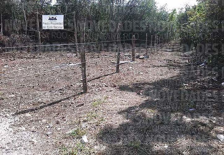 La extensión de terreno se ubica exactamente en la mensura que divide a los municipios de Bacalar y Othón P. Blanco, así como a los ejidos Bacalar y Juan Sarabia. (Javier Ortíz/SIPSE)