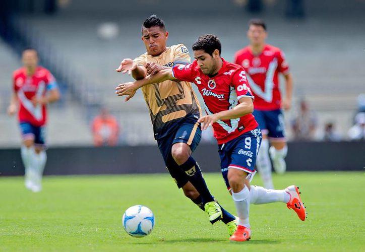 Los líderes del torneo, Pumas de la UNAM y el octavo clasificado, Veracruz, serán uno de los cuatro duelos con los que arranque la Liguilla del futbol mexicano. (Mexsport)
