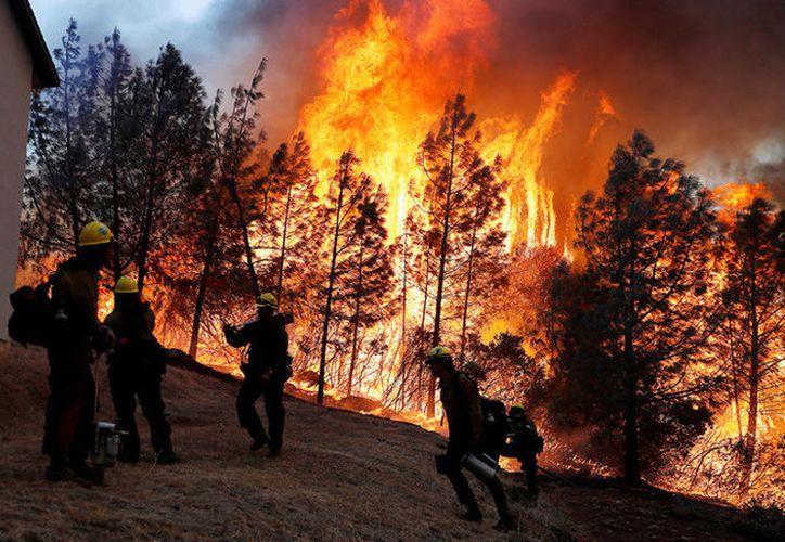 El incendio se originó la madrugada del jueves y las autoridades de California han declarado el estado de emergencia. (RT)